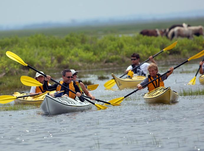 Kayak Tours Ocean City Md