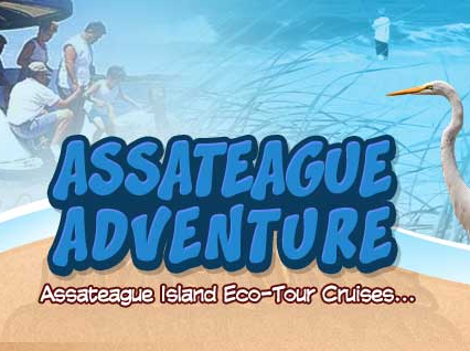 Assateague-Adventure-Ocean-City-MD-01.png