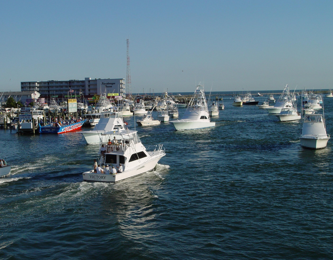 White-Marlin-Marina-Ocean-City-MD-02.png