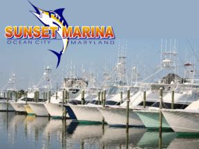 Sunset Marina Ocean City MD